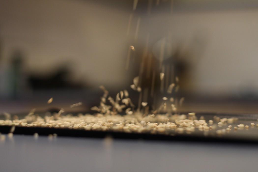 Rain - Rice on a oven tray
